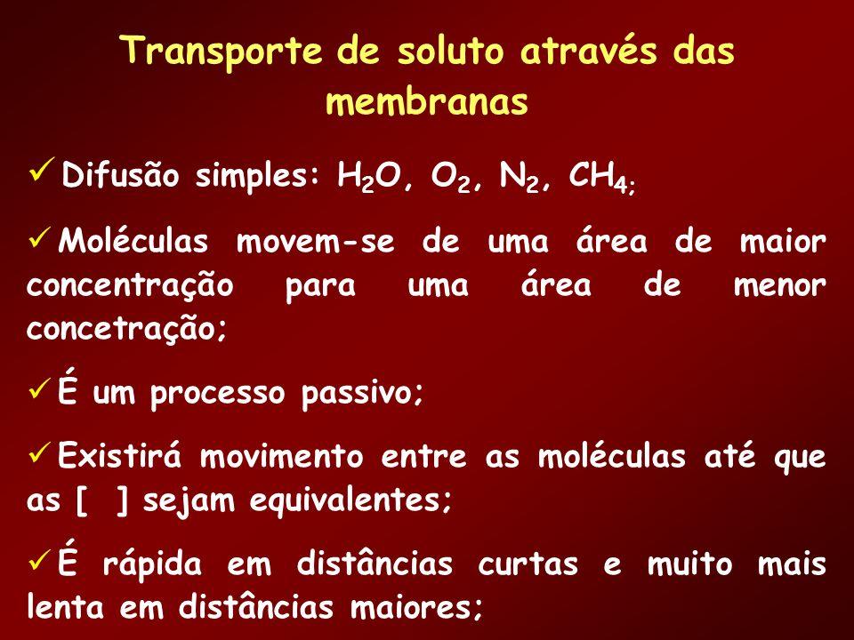 Transporte de soluto através das membranas Difusão simples: H 2 O, O 2, N 2, CH 4; Moléculas movem-se de uma área de maior concentração para uma área