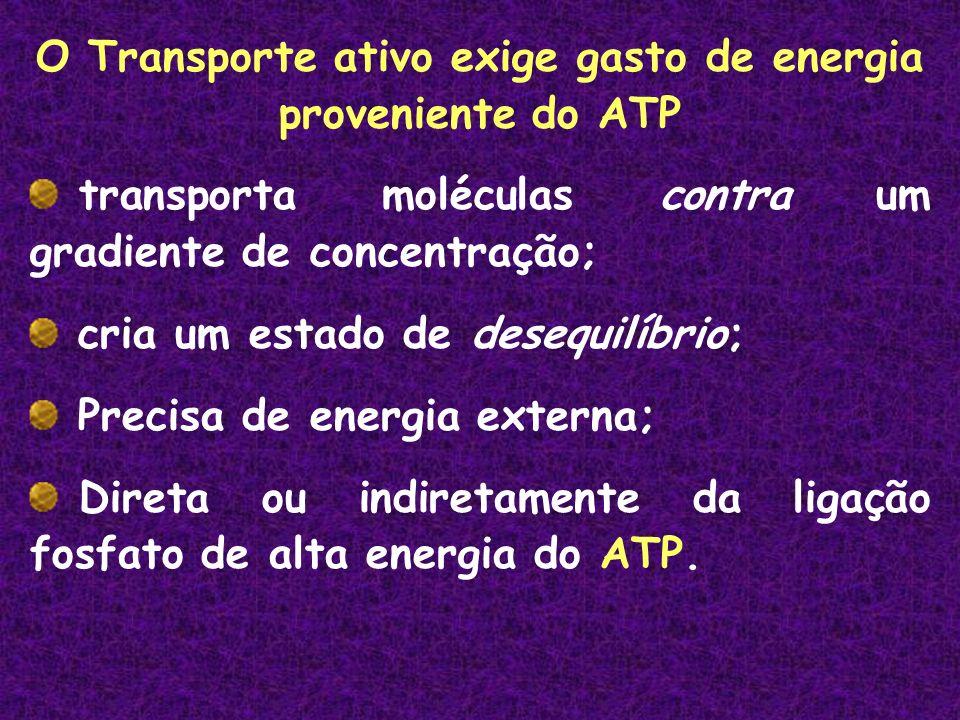 O Transporte ativo exige gasto de energia proveniente do ATP transporta moléculas contra um gradiente de concentração; cria um estado de desequilíbrio