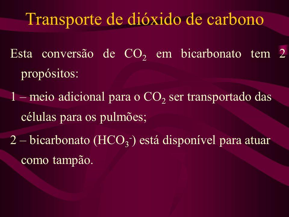 Transporte de dióxido de carbono Esta conversão de CO 2 em bicarbonato tem 2 propósitos: 1 – meio adicional para o CO 2 ser transportado das células p