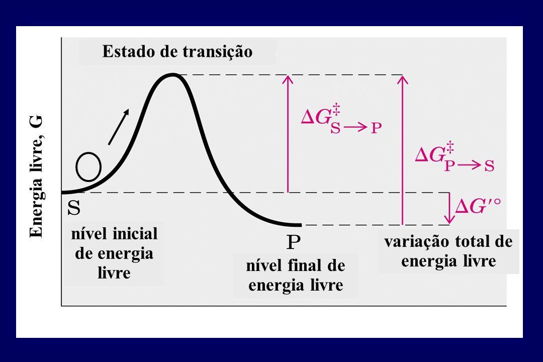 nível inicial de energia livre nível final de energia livre Energia livre, G Estado de transição variação total de energia livre