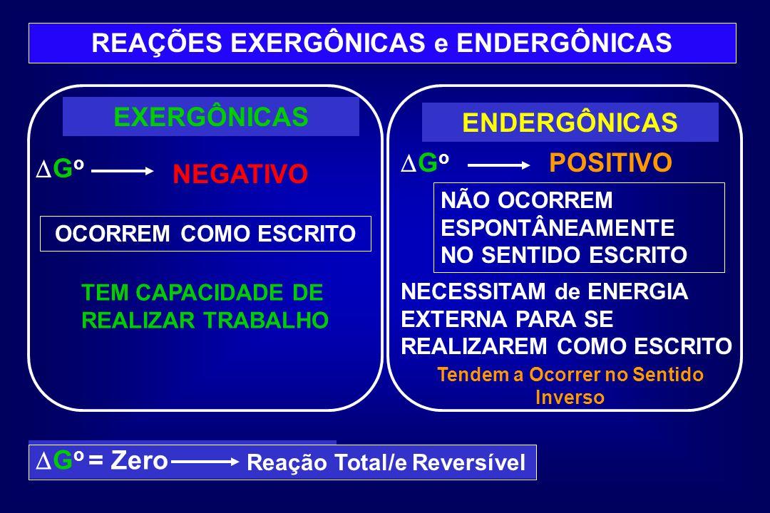 REAÇÕES EXERGÔNICAS e ENDERGÔNICAS EXERGÔNICAS G o ENDERGÔNICAS G o OCORREM COMO ESCRITO NÃO OCORREM ESPONTÂNEAMENTE NO SENTIDO ESCRITO TEM CAPACIDADE