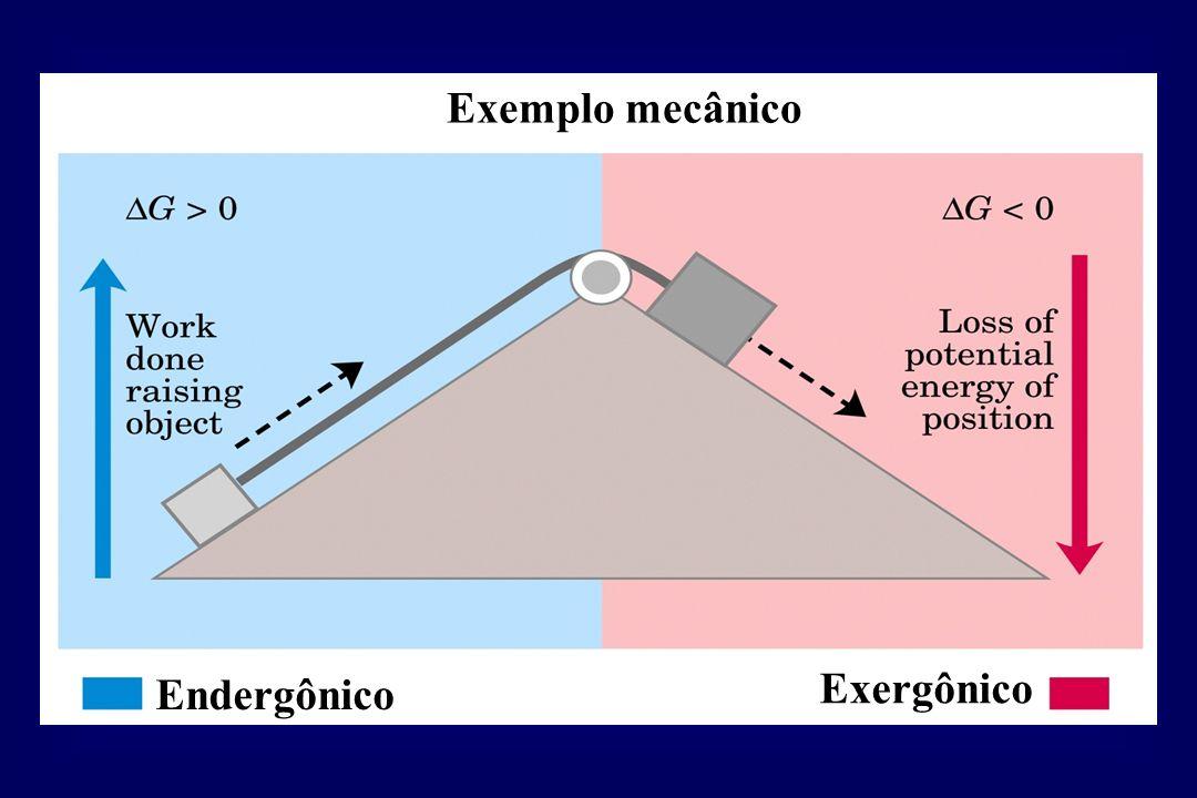 Exemplo mecânico Endergônico Exergônico