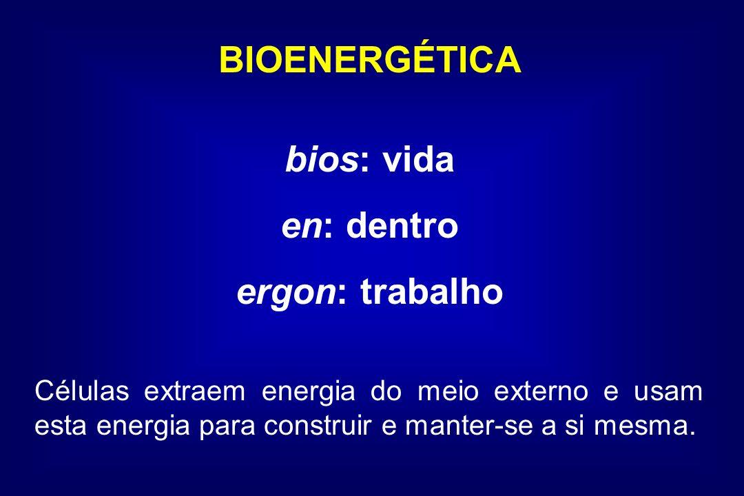BIOENERGÉTICA bios: vida en: dentro ergon: trabalho Células extraem energia do meio externo e usam esta energia para construir e manter-se a si mesma.
