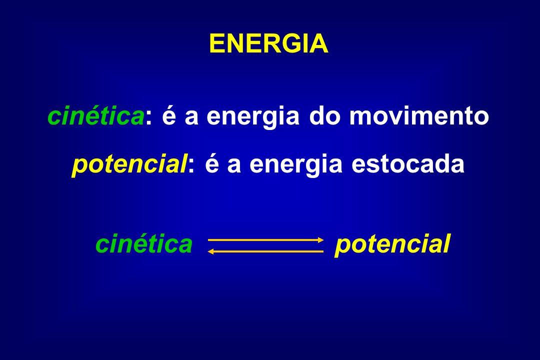 ENERGIA potencial: armazenada em gradientes de concentração e ligações químicas potencialcinética para realizar trabalho Através do metabolismo, a célula transfere a E potencial para a E cinética destinada ao crescimento, manutenção, reprodução e movimento.