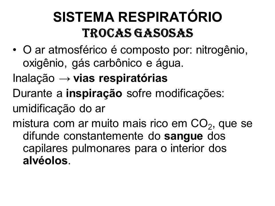 SISTEMA RESPIRATÓRIO TROCAS GASOSAS O ar atmosférico é composto por: nitrogênio, oxigênio, gás carbônico e água. Inalação vias respiratórias Durante a