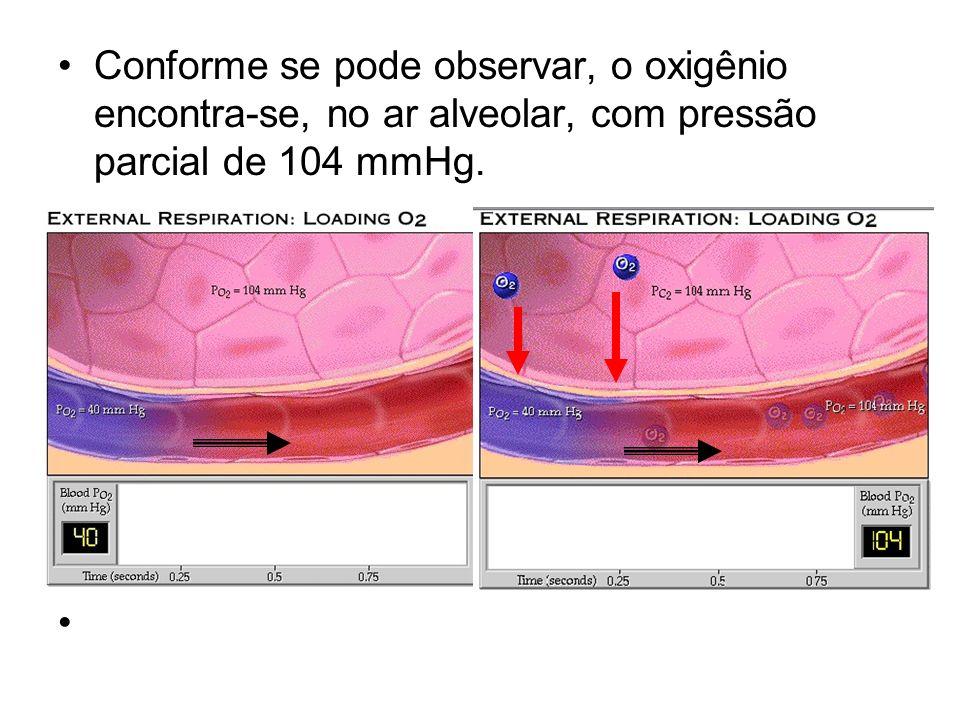 Conforme se pode observar, o oxigênio encontra-se, no ar alveolar, com pressão parcial de 104 mmHg.