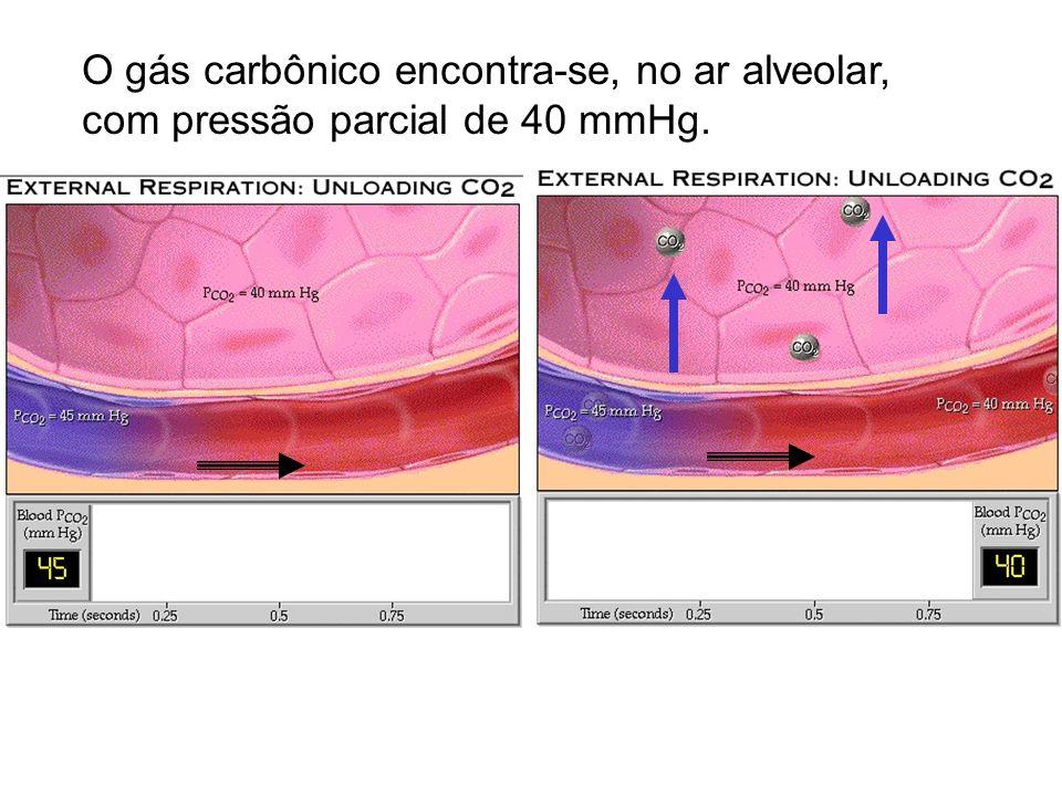 O gás carbônico encontra-se, no ar alveolar, com pressão parcial de 40 mmHg.