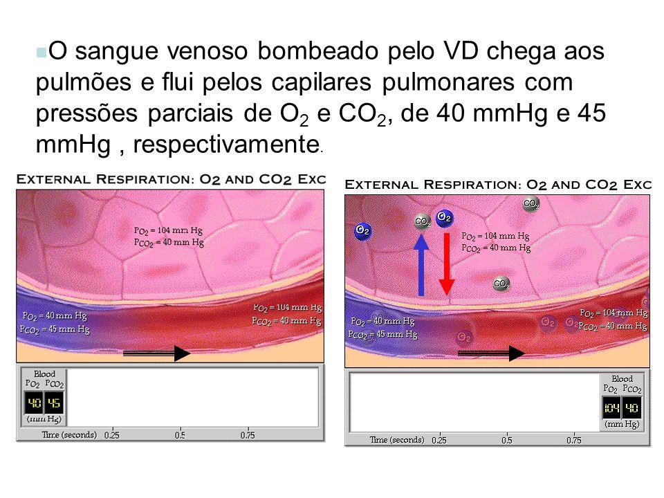 O sangue venoso bombeado pelo VD chega aos pulmões e flui pelos capilares pulmonares com pressões parciais de O 2 e CO 2, de 40 mmHg e 45 mmHg, respec