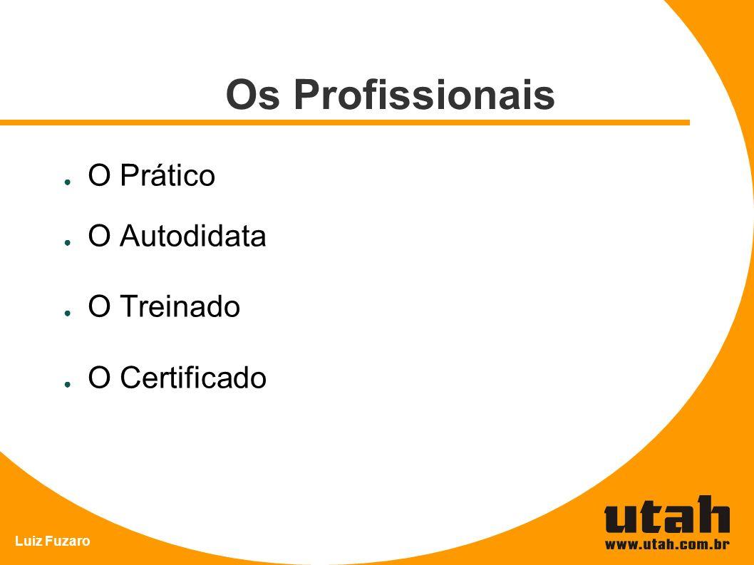 Luiz Fuzaro Os Profissionais O Prático O Autodidata O Treinado O Certificado