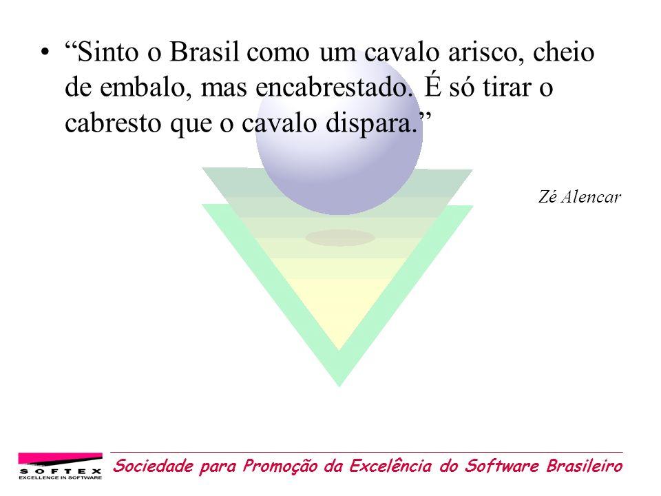 Sociedade para Promoção da Excelência do Software Brasileiro Sinto o Brasil como um cavalo arisco, cheio de embalo, mas encabrestado. É só tirar o cab