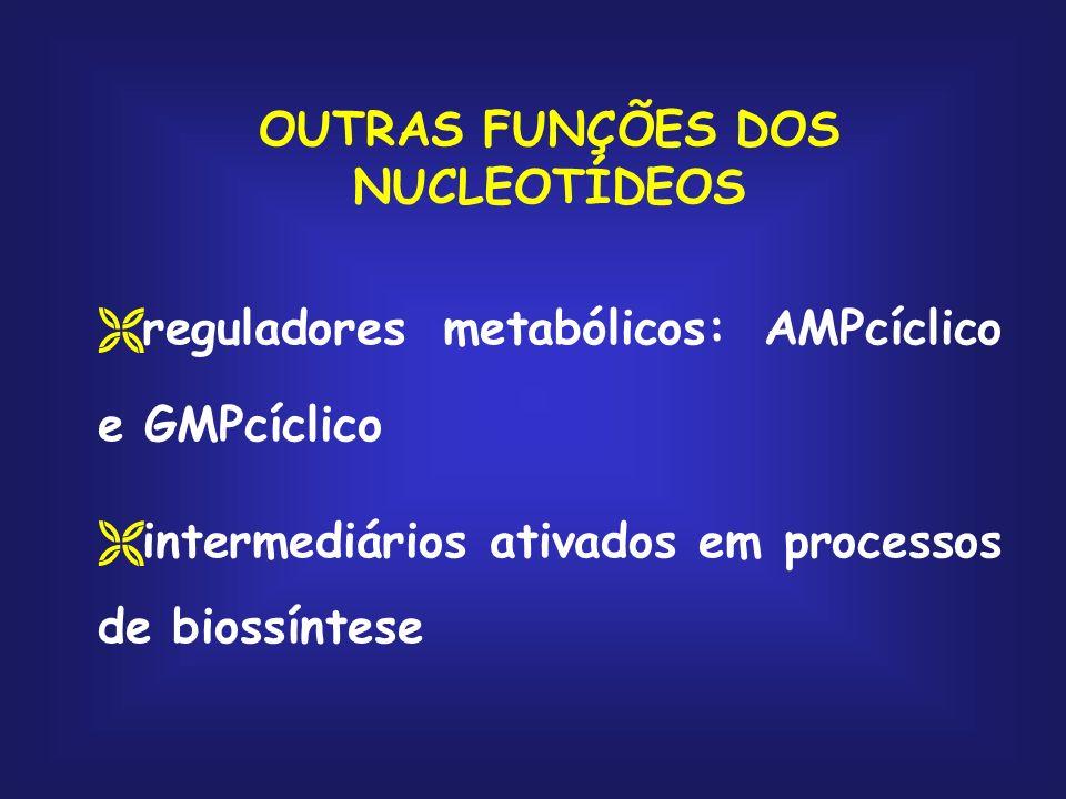 OUTRAS FUNÇÕES DOS NUCLEOTÍDEOS reguladores metabólicos: AMPcíclico e GMPcíclico intermediários ativados em processos de biossíntese