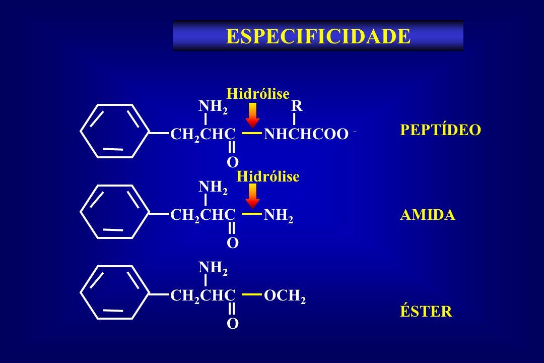 ESPECIFICIDADE CH 2 CHC NHCHCOO - NH 2 O R PEPTÍDEO CH 2 CHC NH 2 NH 2 O AMIDACH 2 CHC OCH 2 NH 2 O ÉSTER Hidrólise