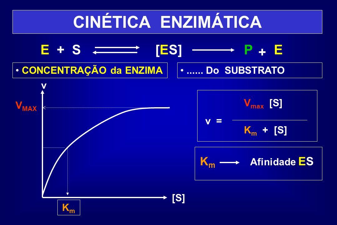 CINÉTICA ENZIMÁTICA E + S [ES]P + E CONCENTRAÇÃO da ENZIMA...... Do SUBSTRATO V MAX v [S] KmKm V max [S] v = K m + [S] K m Afinidade ES