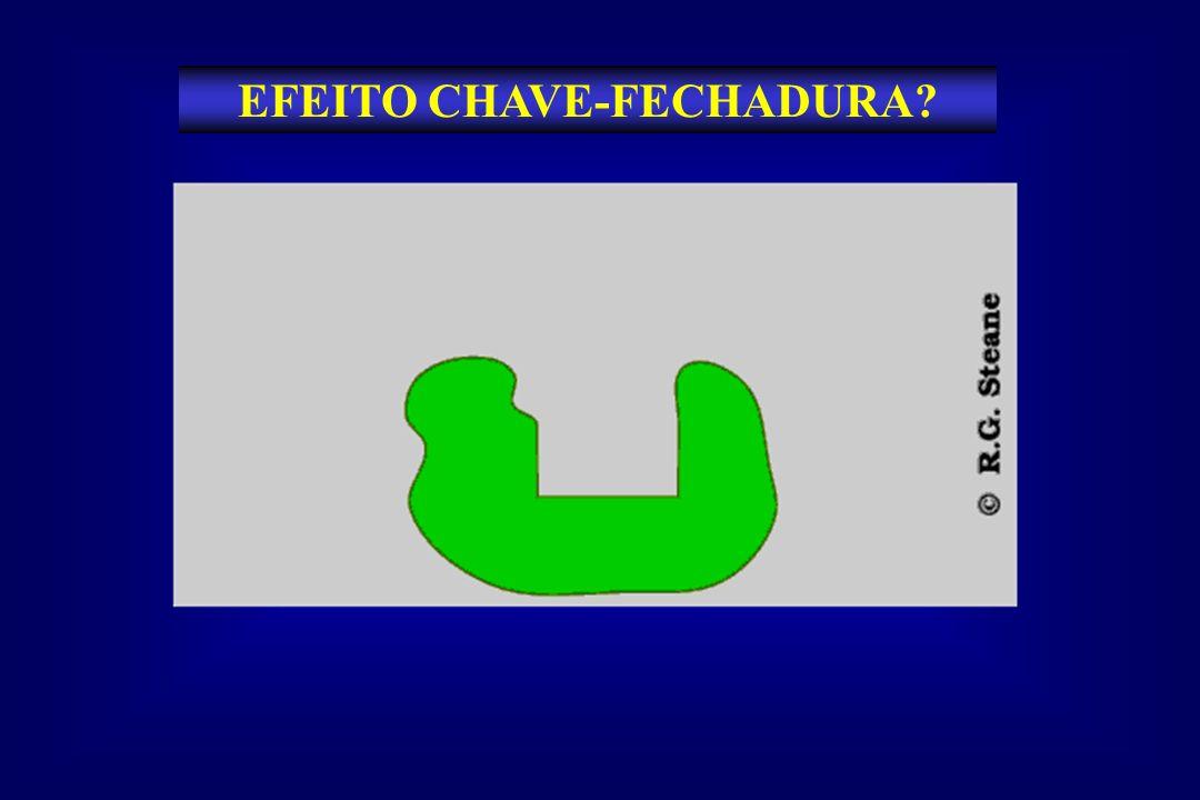 EFEITO CHAVE-FECHADURA?