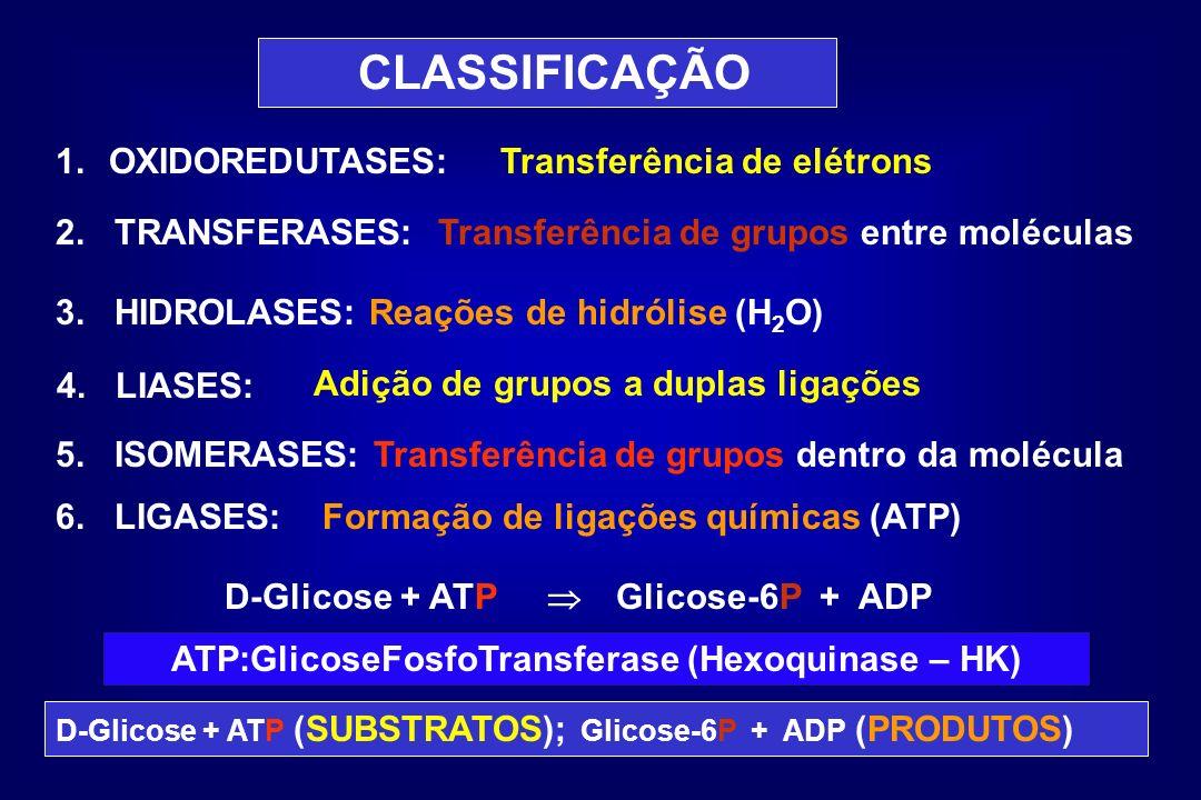 CLASSIFICAÇÃO 1.OXIDOREDUTASES: 2. TRANSFERASES: 3. HIDROLASES: Reações de hidrólise (H 2 O) 4. LIASES: 5. ISOMERASES: Transferência de grupos dentro