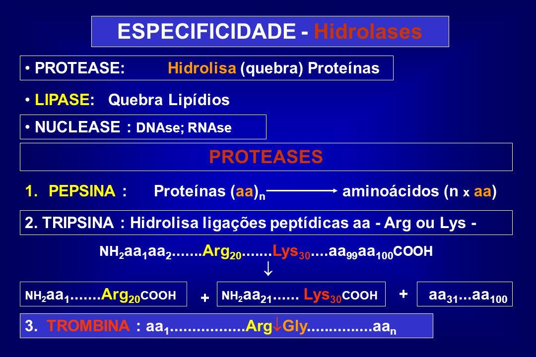 ESPECIFICIDADE - Hidrolases PROTEASE:Hidrolisa (quebra) Proteínas LIPASE:Quebra Lipídios NUCLEASE : DNAse; RNAse PROTEASES 1.PEPSINA : Proteínas (aa)