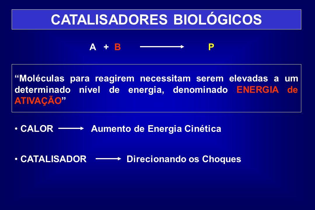 CATALISADORES BIOLÓGICOS A + BP Moléculas para reagirem necessitam serem elevadas a um determinado nível de energia, denominado ENERGIA de ATIVAÇÃO CA