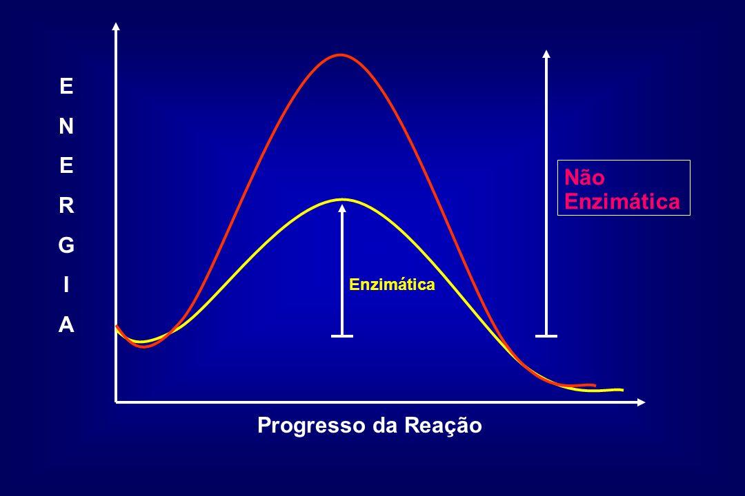 Enzimática Não Enzimática Progresso da Reação ENERGIAENERGIA