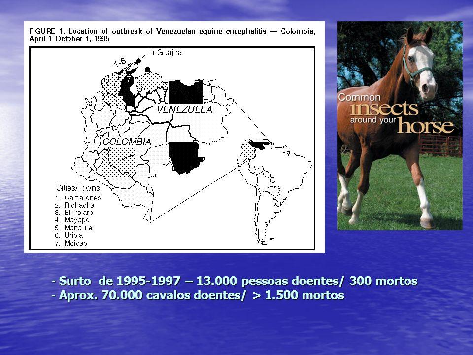 - Surto de 1995-1997 – 13.000 pessoas doentes/ 300 mortos - Aprox. 70.000 cavalos doentes/ > 1.500 mortos