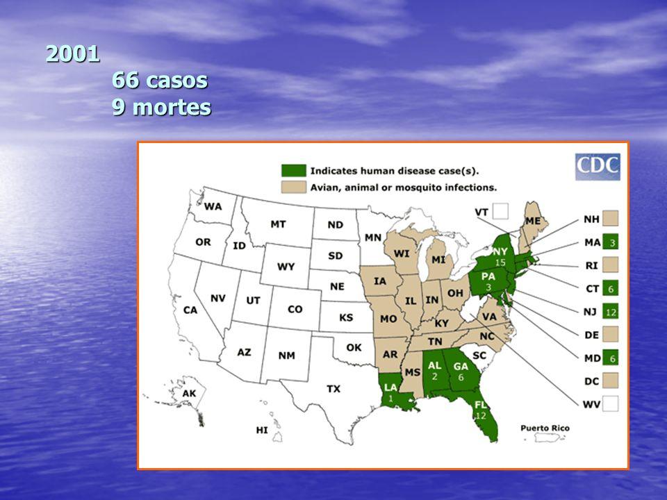 2001 66 casos 9 mortes