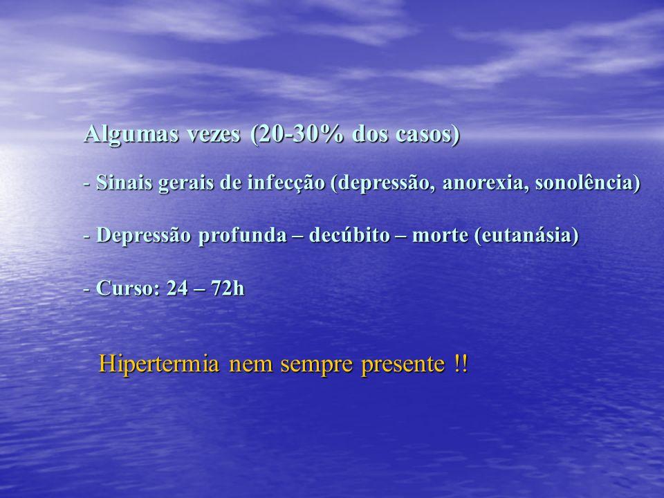 Algumas vezes (20-30% dos casos) - Sinais gerais de infecção (depressão, anorexia, sonolência) - Depressão profunda – decúbito – morte (eutanásia) - C