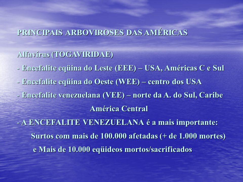 PRINCIPAIS ARBOVIROSES DAS AMÉRICAS Alfavírus (TOGAVIRIDAE) - Encefalite eqüina do Leste (EEE) – USA, Américas C e Sul - Encefalite eqüina do Oeste (W