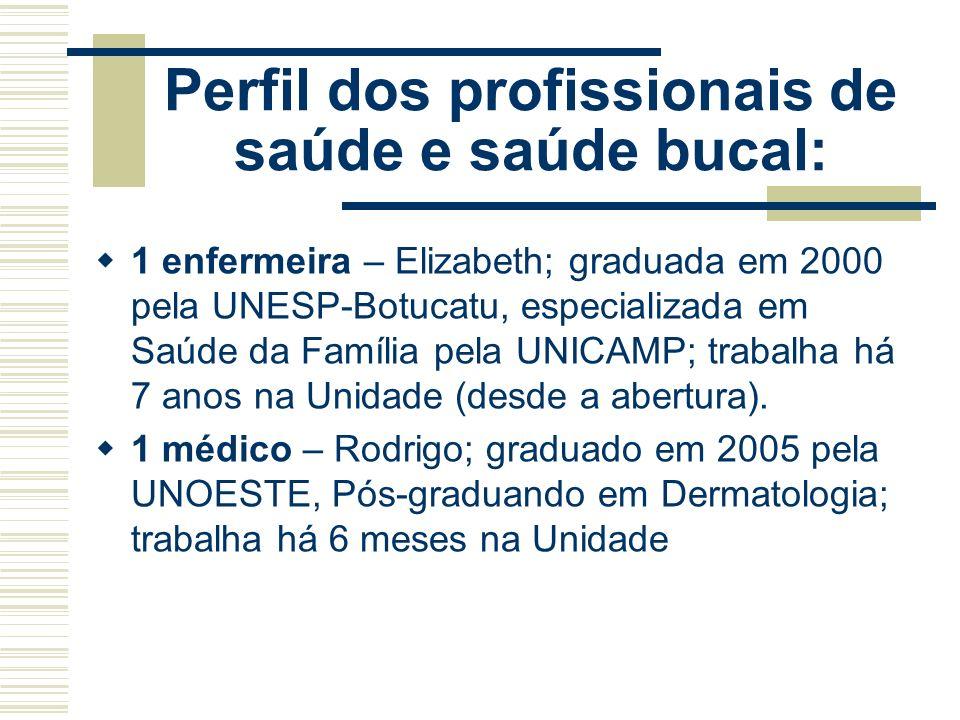 Perfil dos profissionais de saúde e saúde bucal: A Unidade não tem profissional na área de saúde bucal. Conta com profissionais da área de saúde: - 01