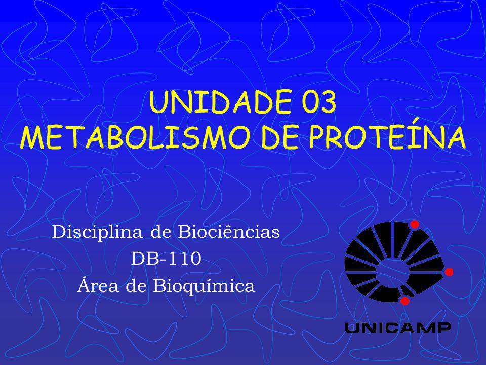 UNIDADE 03 METABOLISMO DE PROTEÍNA Disciplina de Biociências DB-110 Área de Bioquímica