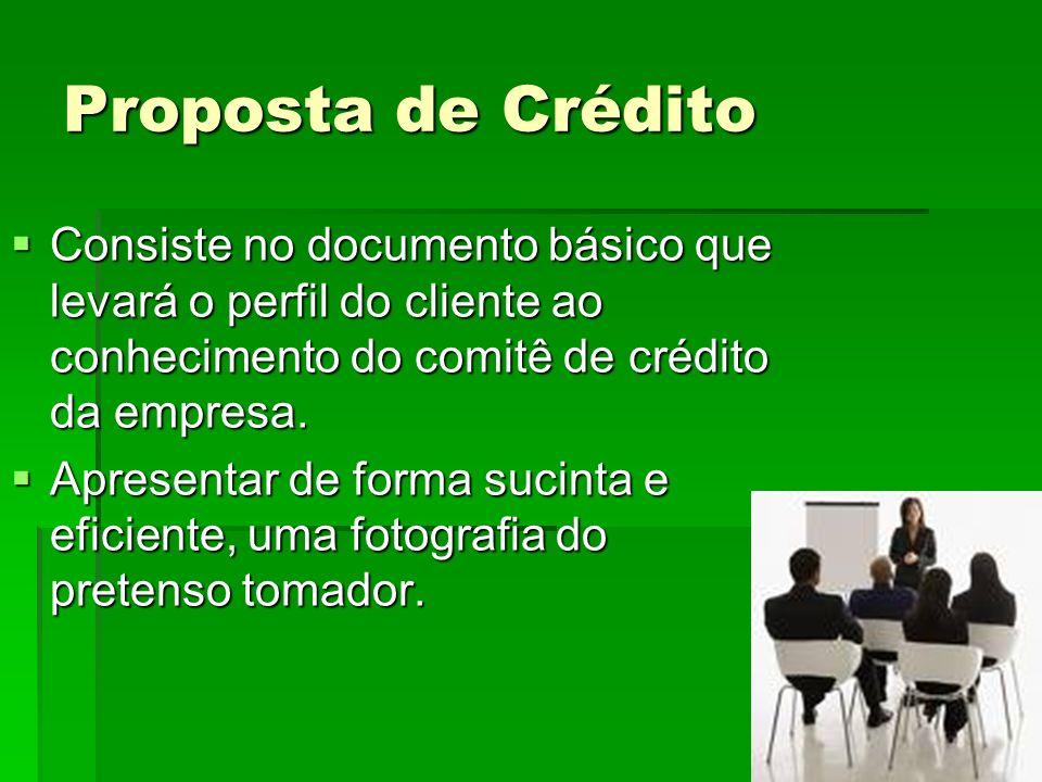 Proposta de Crédito Consiste no documento básico que levará o perfil do cliente ao conhecimento do comitê de crédito da empresa. Consiste no documento