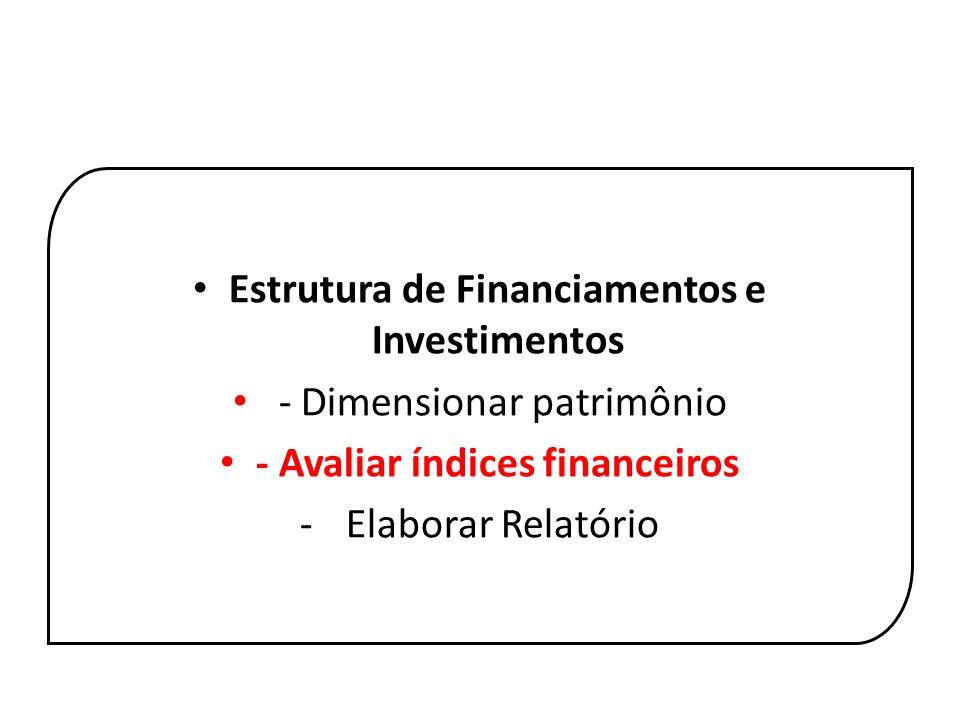 Estrutura de Financiamentos e Investimentos - Dimensionar patrimônio - Avaliar índices financeiros - Elaborar Relatório