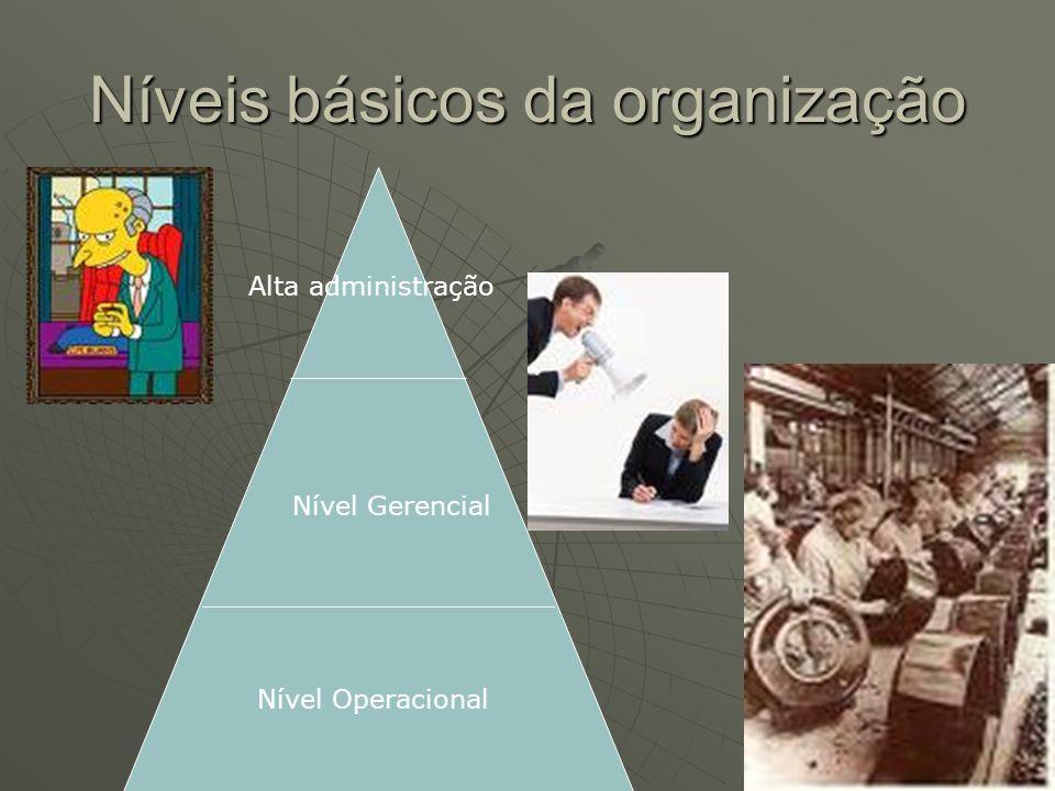 Níveis básicos da organização Alta administração Nível Gerencial Nível Operacional