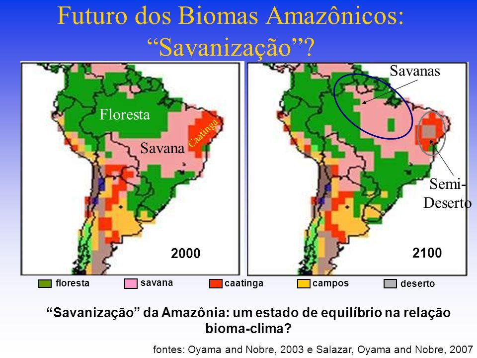 Futuro dos Biomas Amazônicos: Savanização.