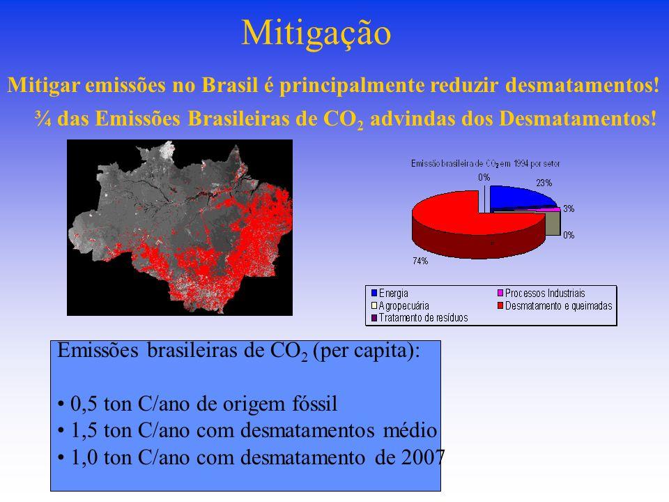 ¾ das Emissões Brasileiras de CO 2 advindas dos Desmatamentos.