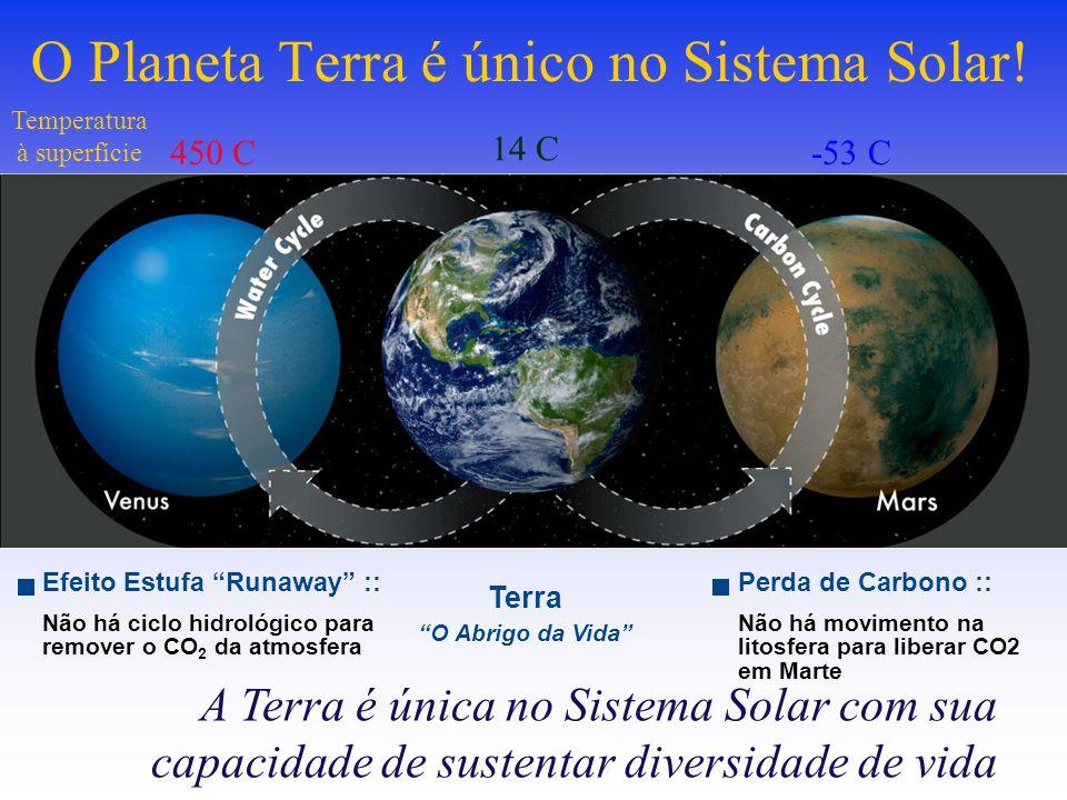 Efeito Estufa Runaway :: Não há ciclo hidrológico para remover o CO 2 da atmosfera A Terra é única no Sistema Solar com sua capacidade de sustentar diversidade de vida O Planeta Terra é único no Sistema Solar.