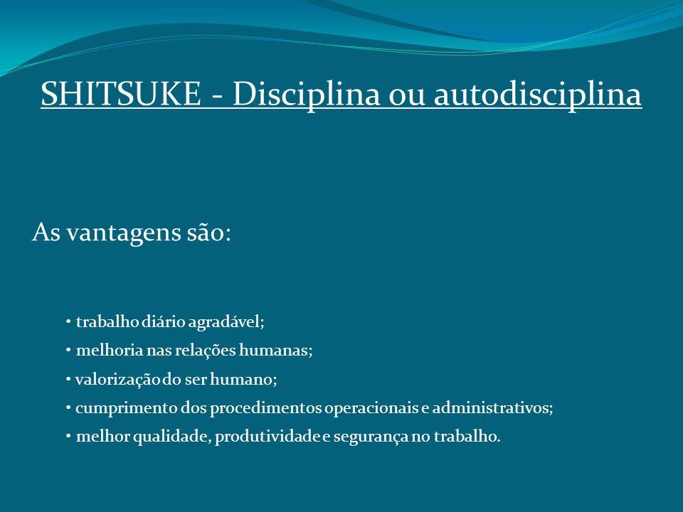 SHITSUKE Disciplina ou autodisciplina As vantagens são: trabalho diário agradável; melhoria nas relações humanas; valorização do ser humano; cumprimen