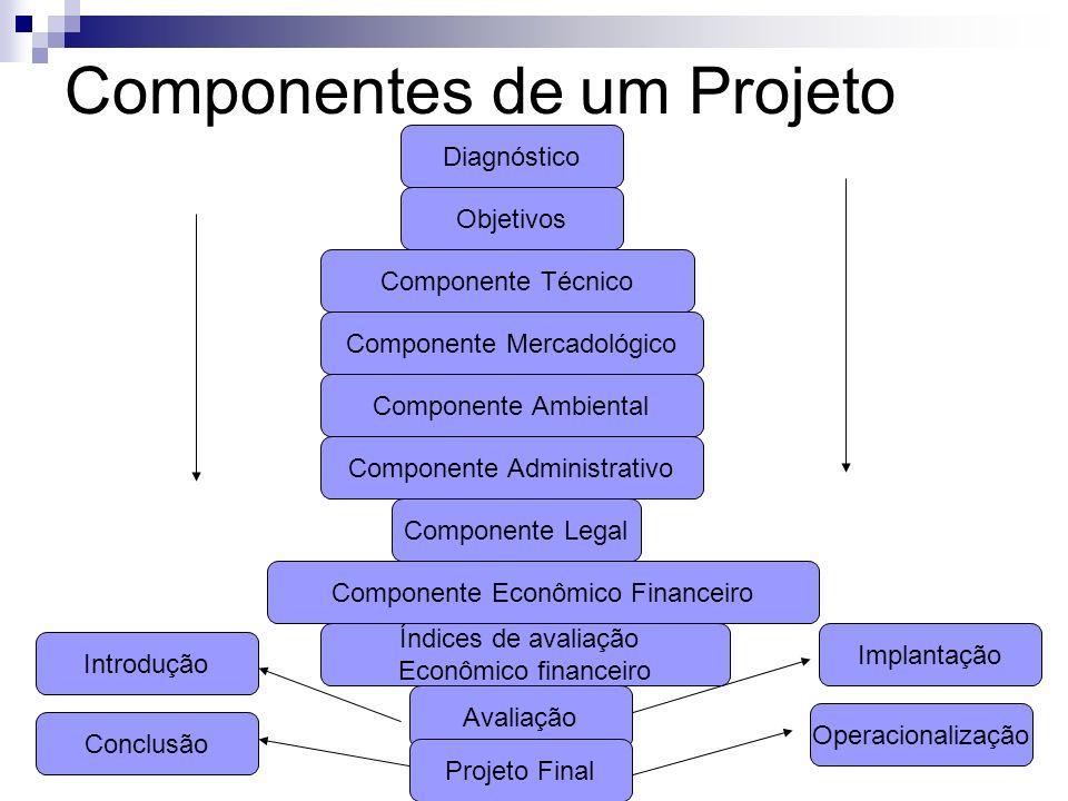 Componentes de um Projeto Diagnóstico Objetivos Componente Mercadológico Componente Técnico Componente Ambiental Componente Administrativo Componente