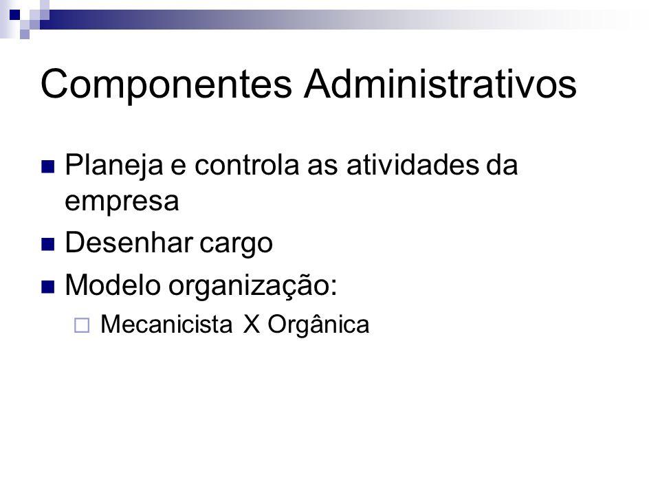 Componentes Administrativos Planeja e controla as atividades da empresa Desenhar cargo Modelo organização: Mecanicista X Orgânica