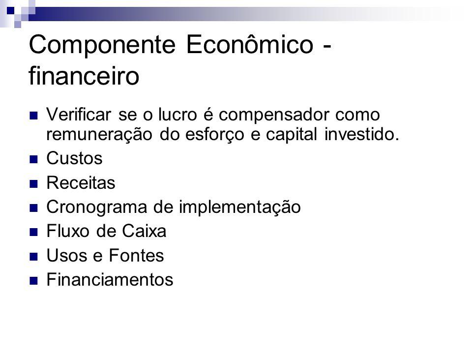 Componente Econômico - financeiro Verificar se o lucro é compensador como remuneração do esforço e capital investido. Custos Receitas Cronograma de im