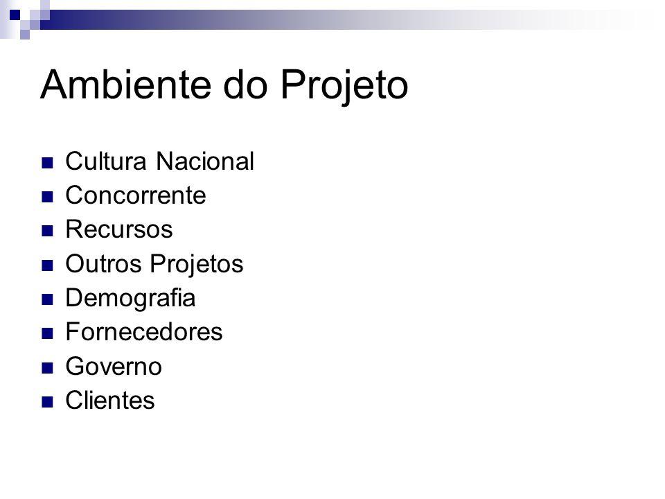 Ambiente do Projeto Cultura Nacional Concorrente Recursos Outros Projetos Demografia Fornecedores Governo Clientes