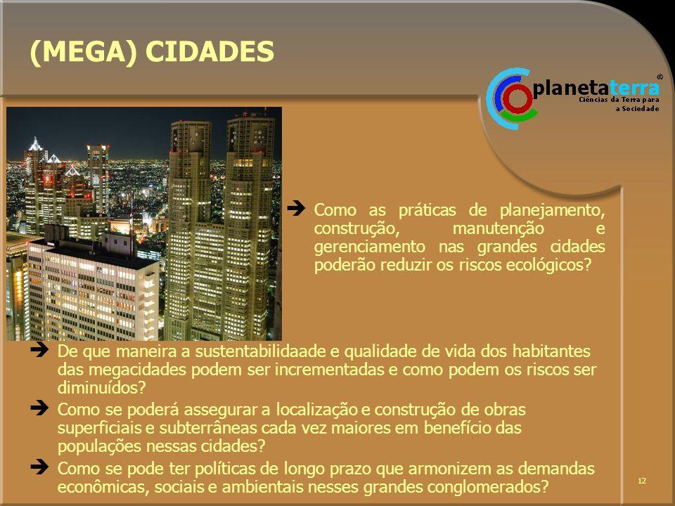 12 Como as práticas de planejamento, construção, manutenção e gerenciamento nas grandes cidades poderão reduzir os riscos ecológicos? (MEGA) CIDADES D