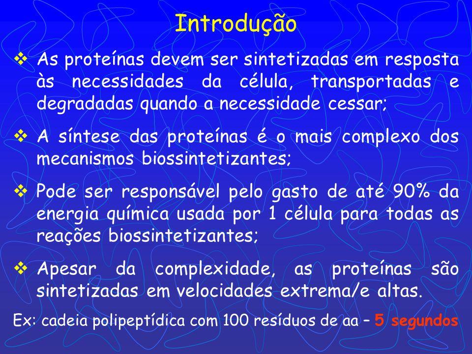 Biossíntese de Proteínas I – Introdução: 70 proteínas ribossômicas, 20 ou + enzimas ativadoras de aa, + 12 enzimas auxiliares, fatores de iniciação, a