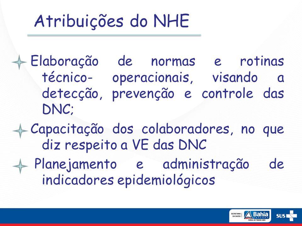 Atribuições do NHE Elaboração de normas e rotinas técnico- operacionais, visando a detecção, prevenção e controle das DNC; Capacitação dos colaborador