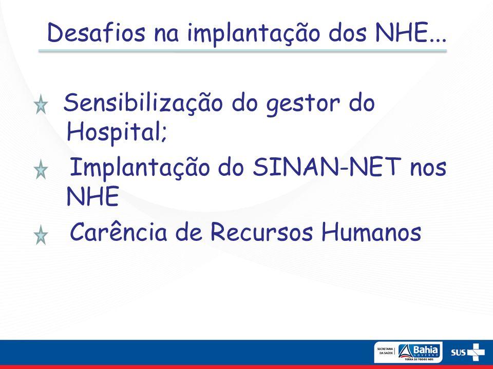 Desafios na implantação dos NHE... Sensibilização do gestor do Hospital; Implantação do SINAN-NET nos NHE Carência de Recursos Humanos