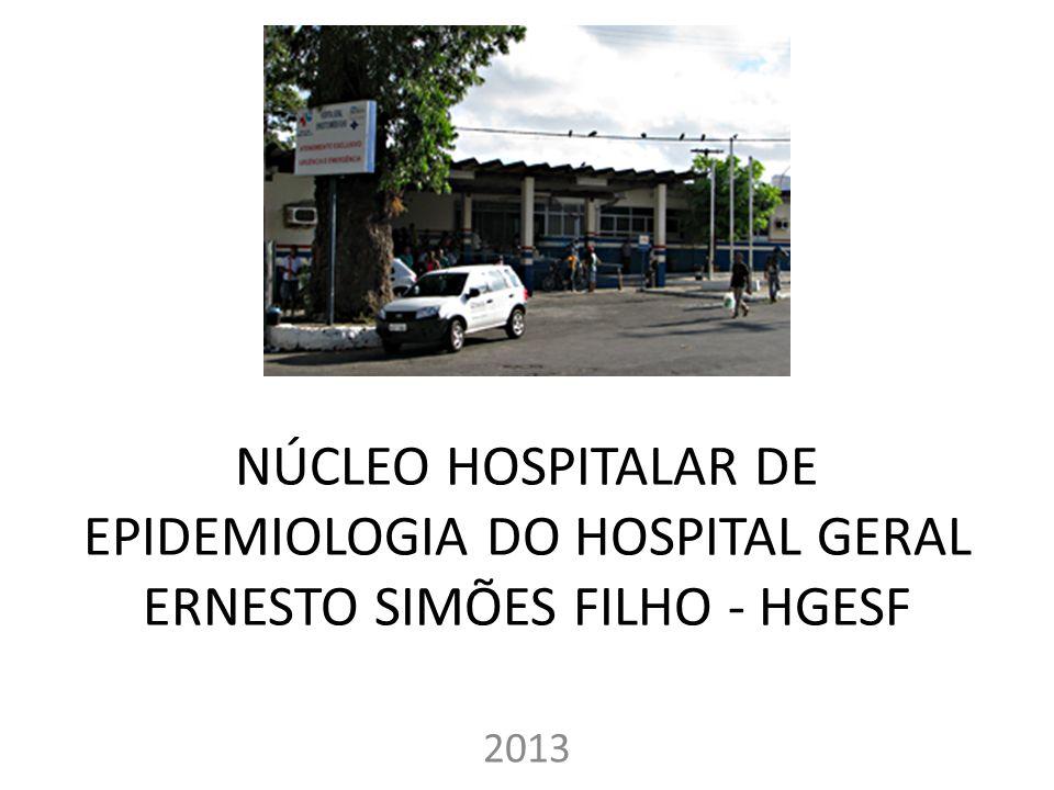NÚCLEO HOSPITALAR DE EPIDEMIOLOGIA DO HOSPITAL GERAL ERNESTO SIMÕES FILHO - HGESF 2013