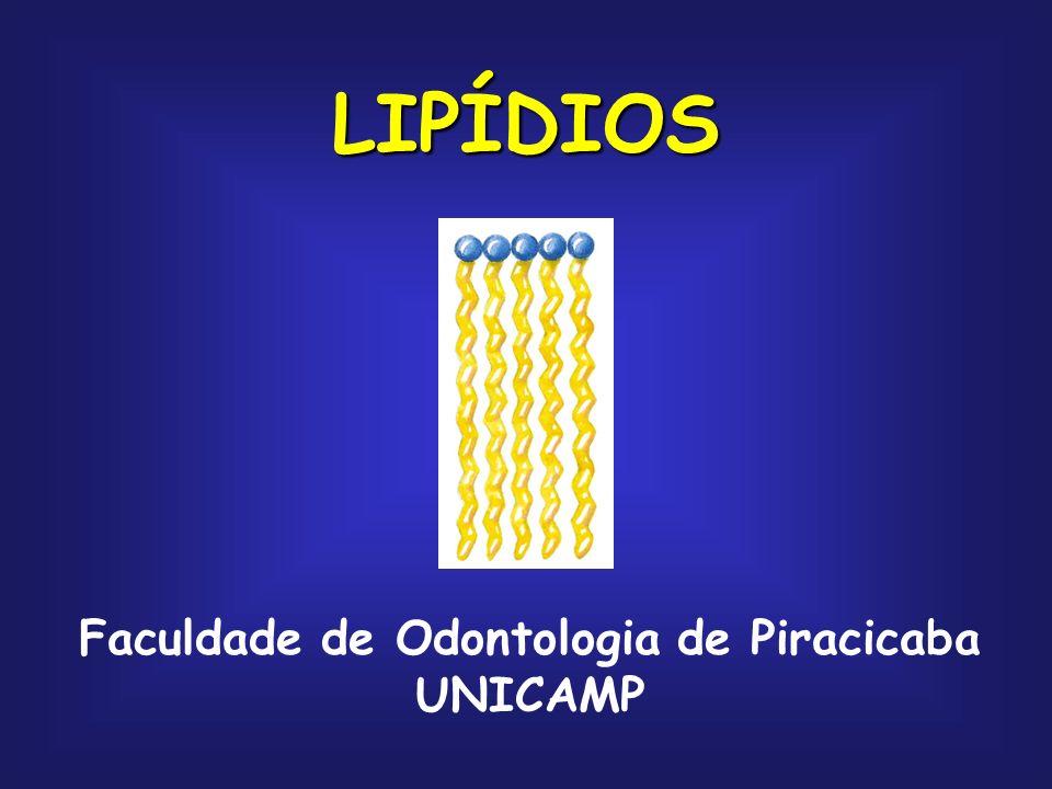 LIPÍDIOS Faculdade de Odontologia de Piracicaba UNICAMP