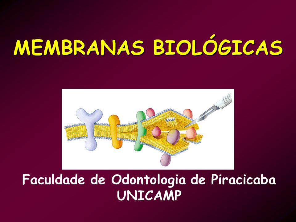 MEMBRANAS BIOLÓGICAS Faculdade de Odontologia de Piracicaba UNICAMP