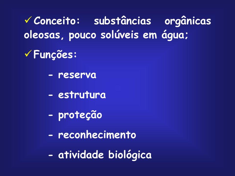 Cavidade aquosa Lipossoma
