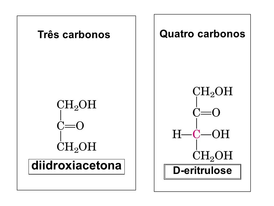 Três carbonos diidroxiacetona Quatro carbonos D-eritrulose