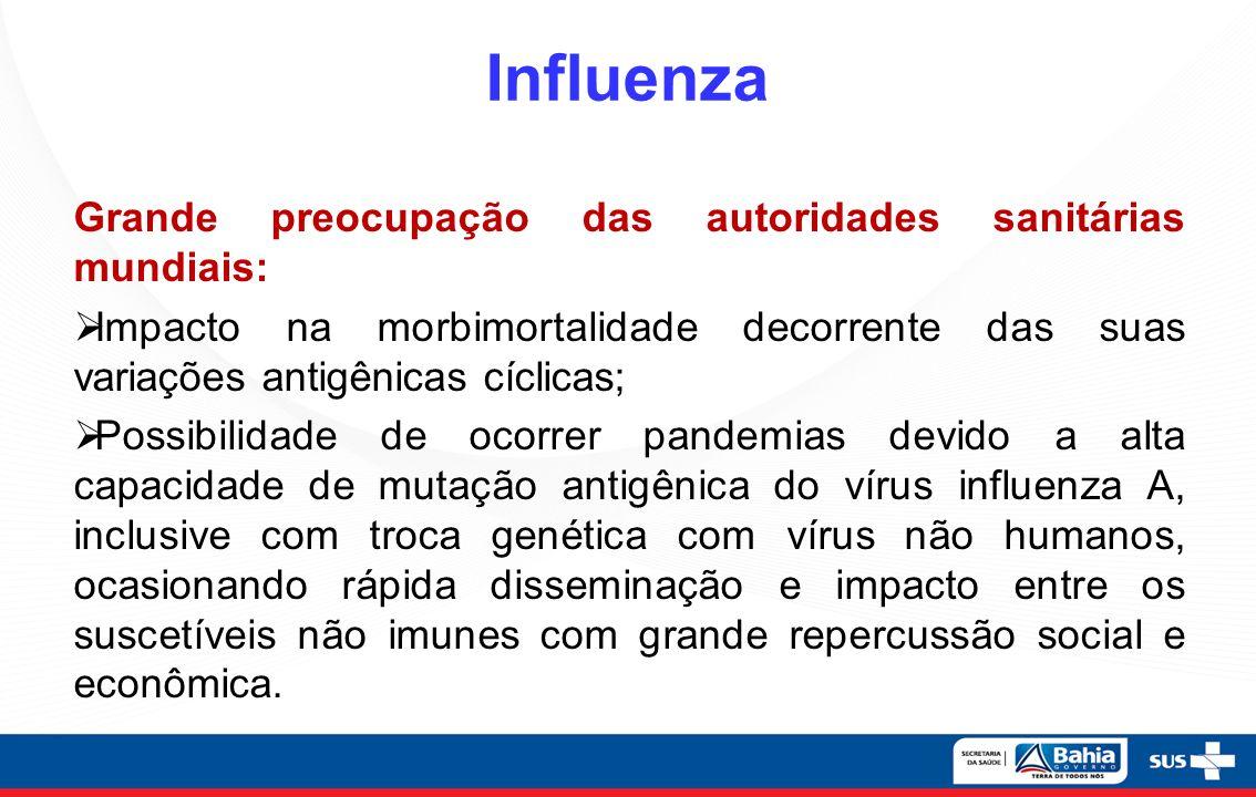 Contexto Internacional 2013 Estados Unidos - Período Sazonal Epidêmico 2012- 2013 – Vírus Influenza A (H3N2) V China – Vírus da Influenza Aviária A (H7N9): 128 casos e 26 óbitos