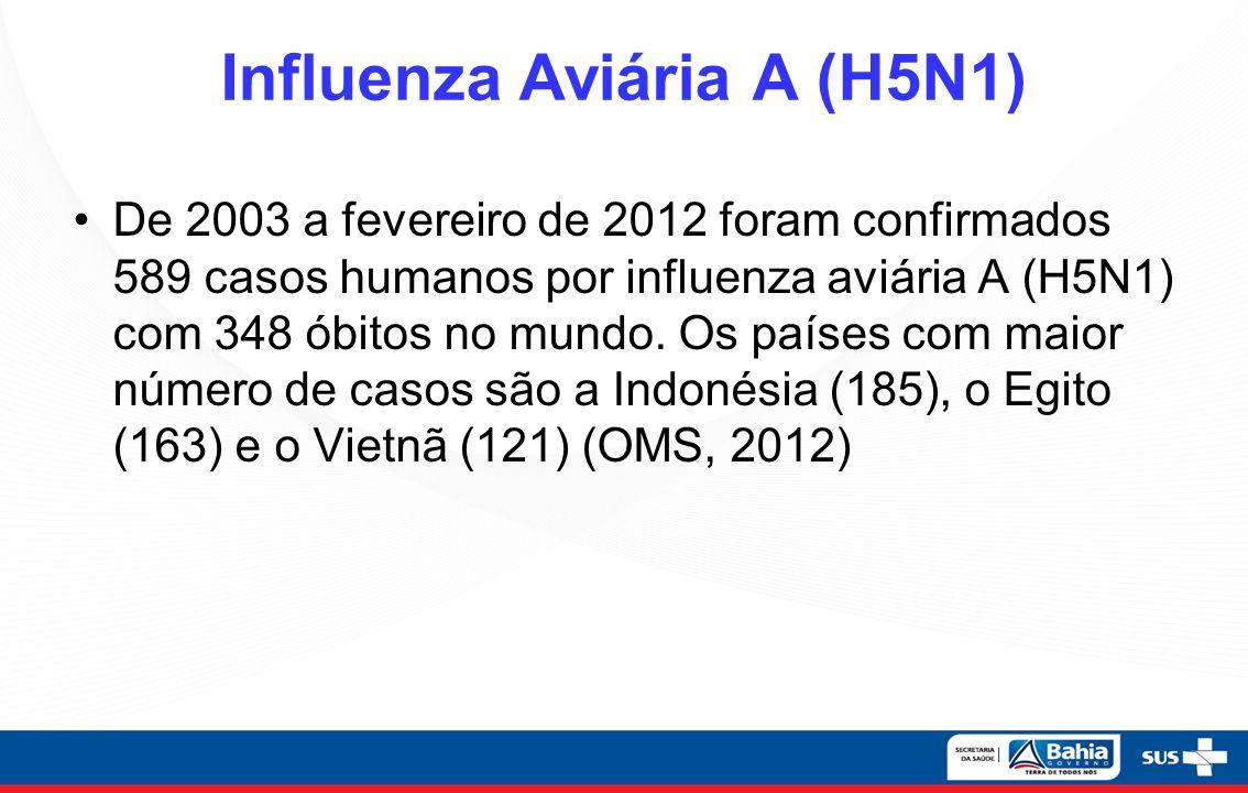 Fases da Vigilância da Influenza A H1N1 no Brasil Contenção SE 16 a 28 de 2009 Mitigação SE 29/2009 a agosto de 2010 Pós-pandêmica a partir de agosto de 2010